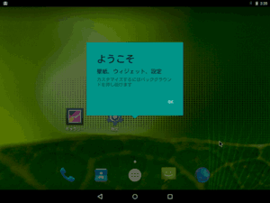 Android x86 初期設定画面9