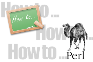 perl howto
